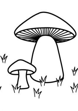Mushroom nature coloring page for kids, printable free