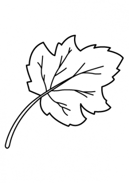 leaf coloring page, nature coloring page, leaves coloring page, printable coloring page, free coloring page