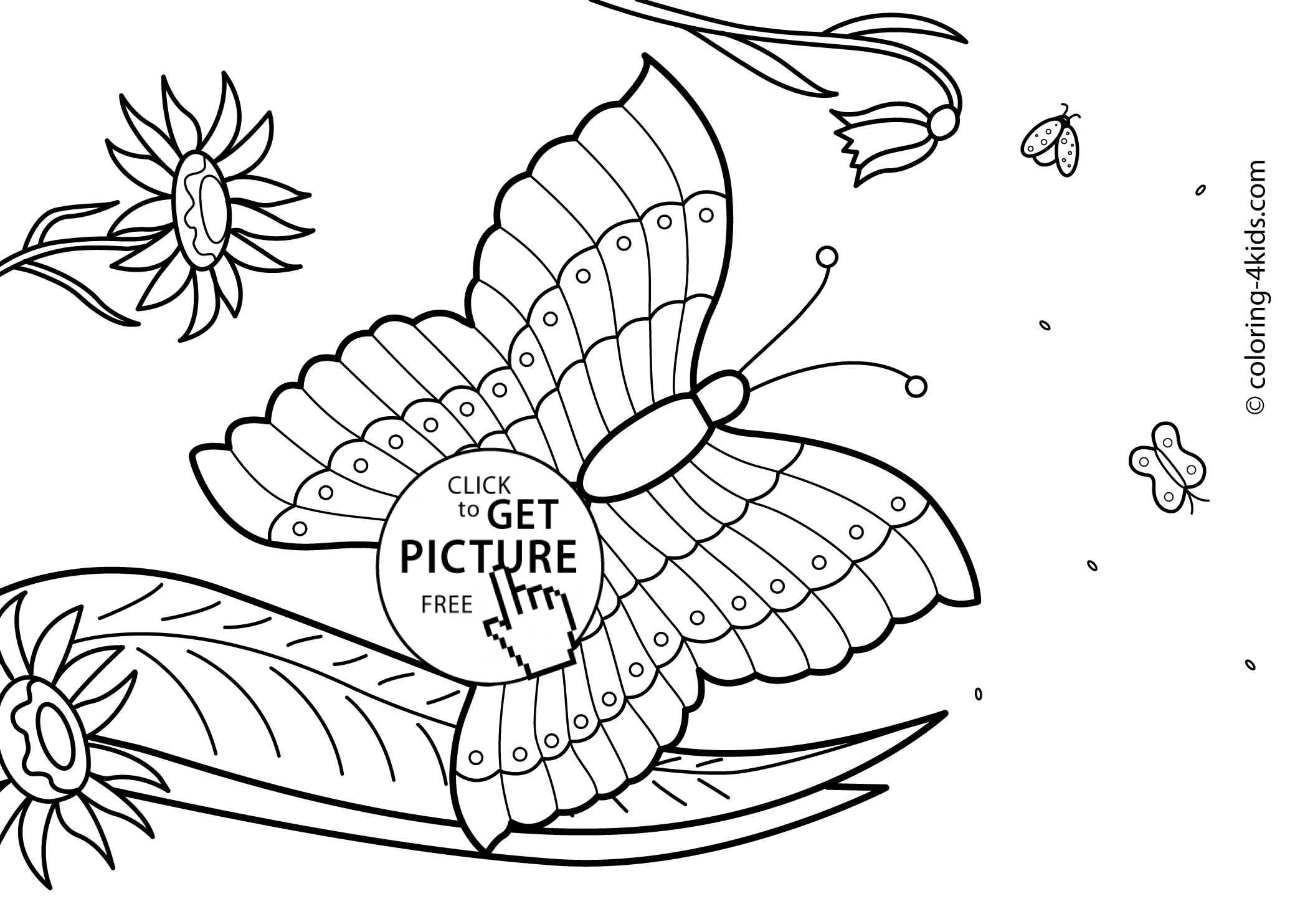 coloring pages for summer - butterfly summer coloring pages for kids free printable