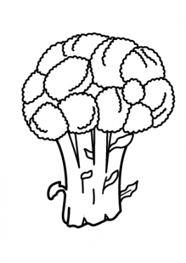 Broccoli vegetable coloring page for kids, printable