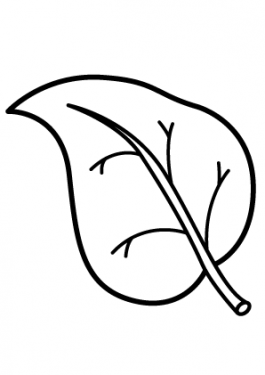 Leaf nature coloring page for kids, printable free